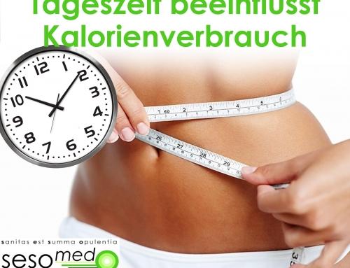 Tageszeit beeinflusst Kalorienverbrauch!