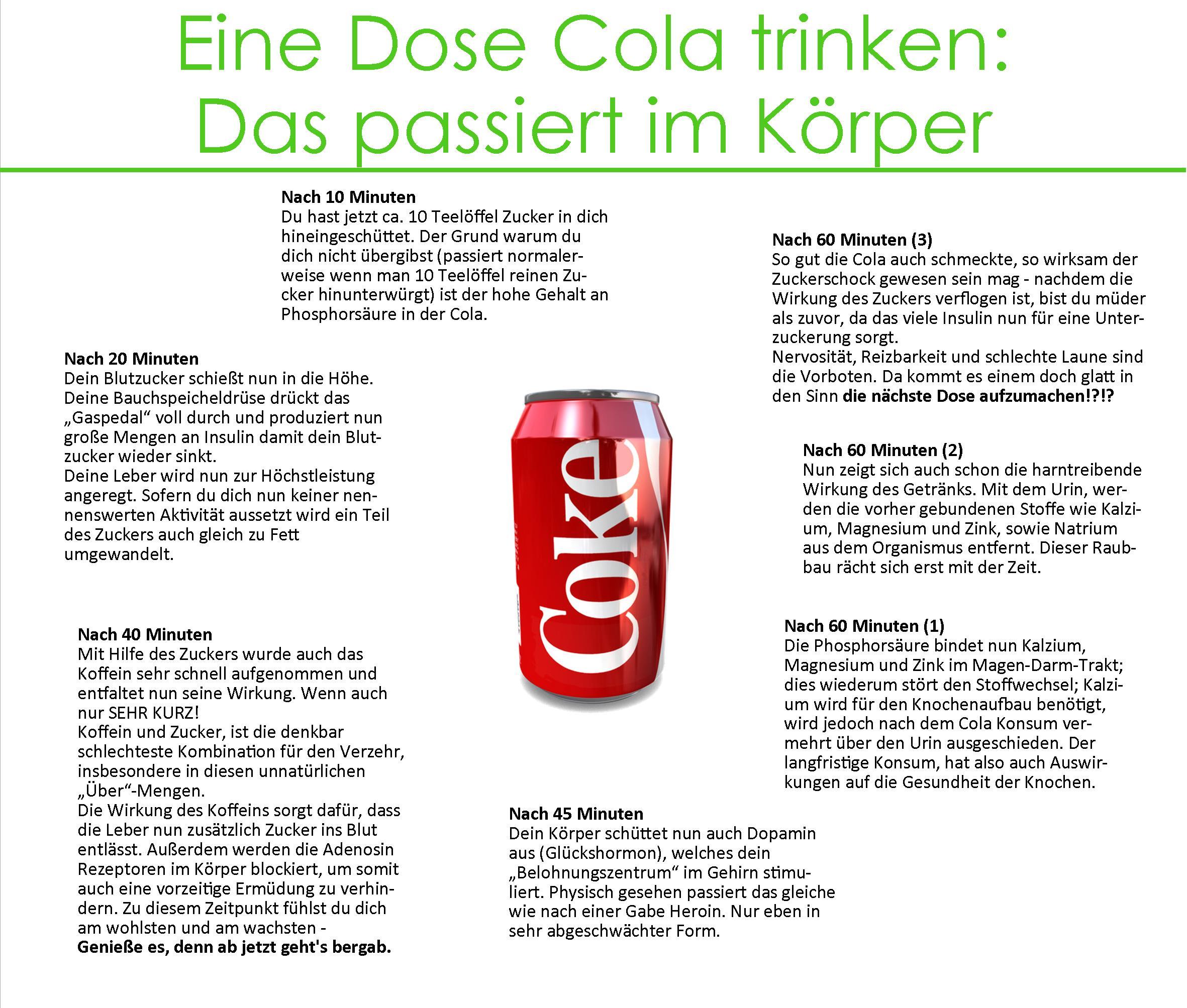Eine Dose Cola – das passiert im Körper